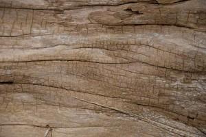 Как да реставрираме дърво в 3 лесни стъпки (Видео)